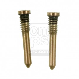 iPhone 11 / 11 Pro / 11 Pro Max Bottom Screw ( 2 Set ) - Gold